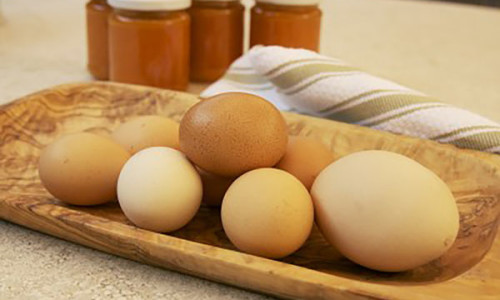 """Fresh eggs from the """"Orto"""""""