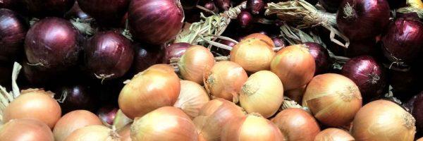 Festa-della-Cipolla-Onions